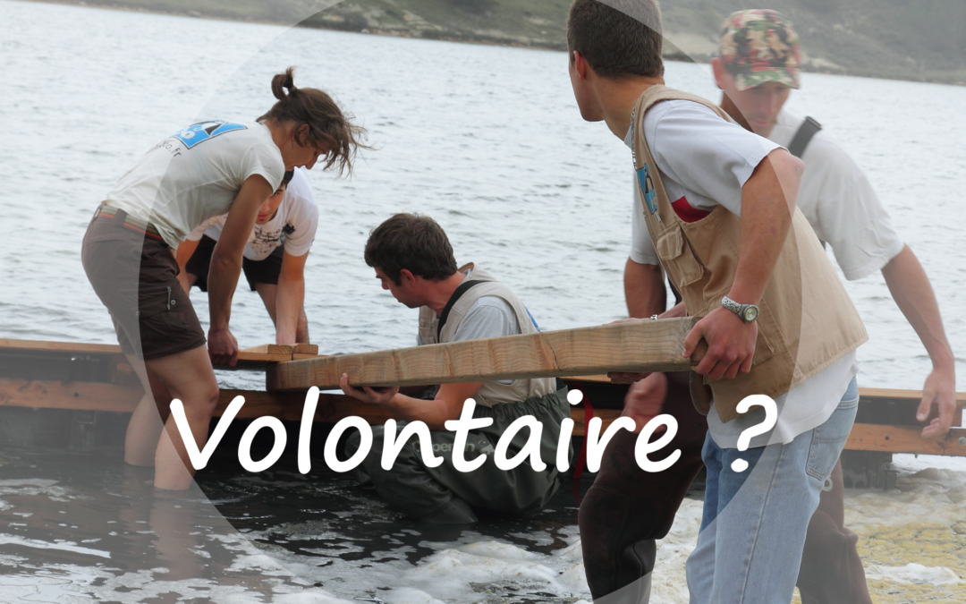 Wanted : jeunes volontaires !